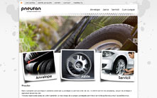 Site de prezentare produse si servicii Pneufan