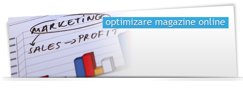 Optimizare magazin online