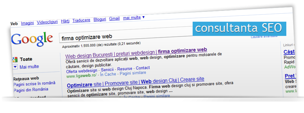 Optimizare site web