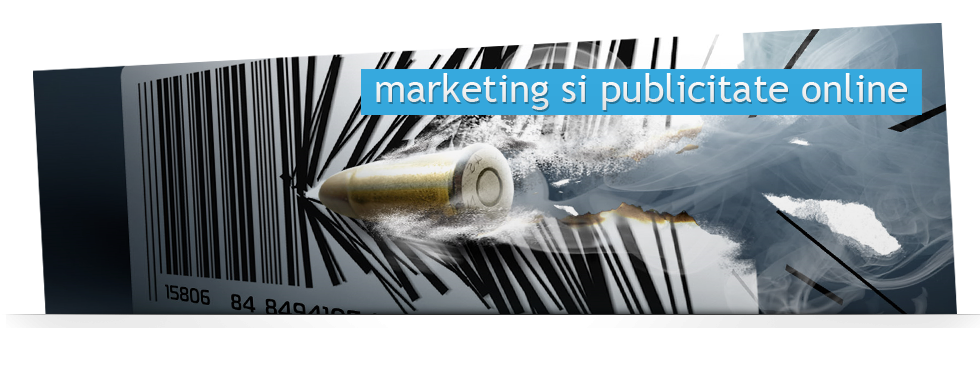 Marketing si publicitate online