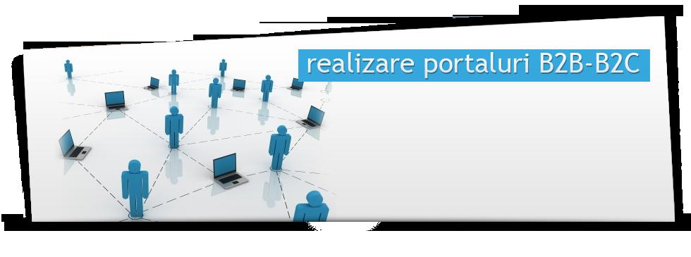 Realizare portaluri B2B-B2C