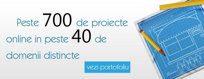 Portofoliu proiecte web design